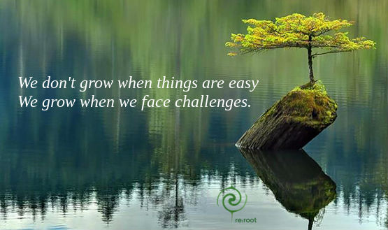 Grow when you face challenges