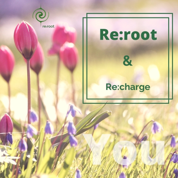 Re-root.jpg